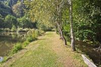 cesta k rybníku