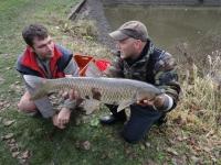 rybí úlovek - šafrankův mlýn